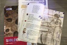 Photo of Tekstet shkollore me përmbajtje fyese dhe tendencioze, edhe gjatë këtij vit të ri shkollor
