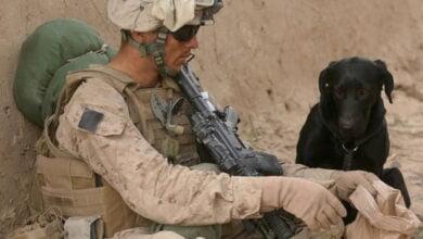 Photo of SHBA-ja do të tërheqë 2,200 trupa ushtarake nga Iraku deri në fund të shtatorit – ALSAT-M
