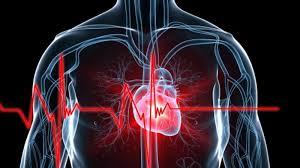 Photo of Kontrolle parandaluese falas me rastin e Ditës botërore të zemrës