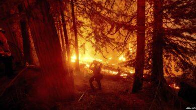 "Photo of Ndryshimet klimatike ""po nxisin zjarret në Kaliforni"""