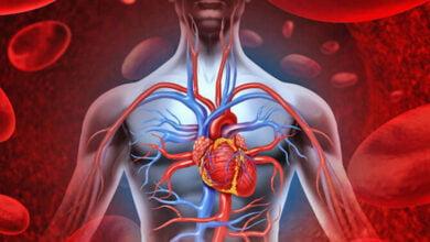 Photo of Çfarë i ndodh trupit kur rritet tensioni i lartë i gjakut